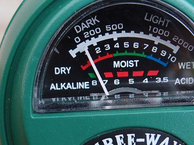 pHの測定結果