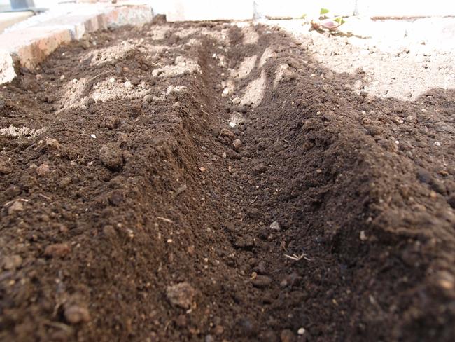 土に溝を掘る