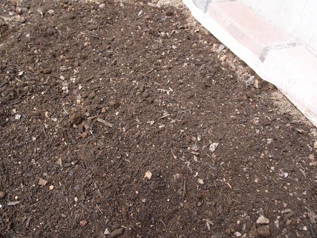 トマトを植える場所