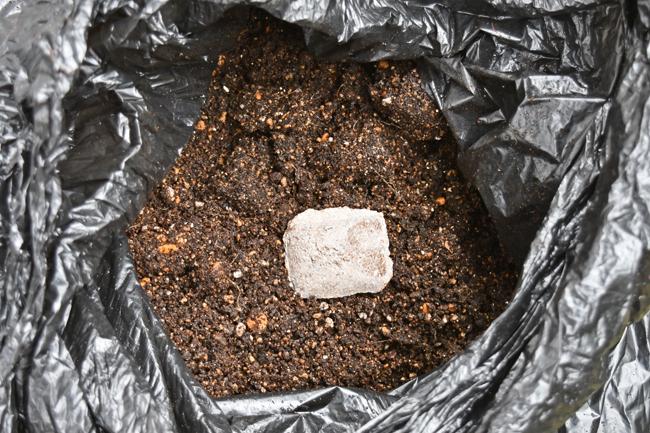 ボカシ肥料を入れる