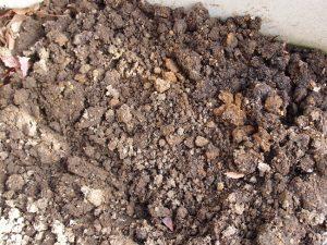 固く粘土質の土