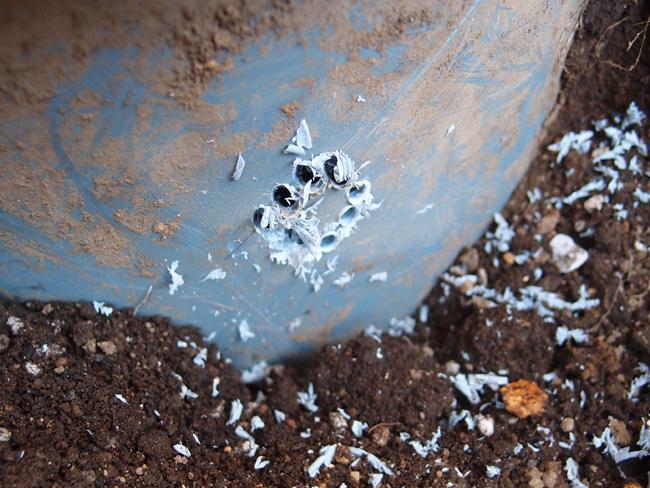 雨水桝に穴を開ける