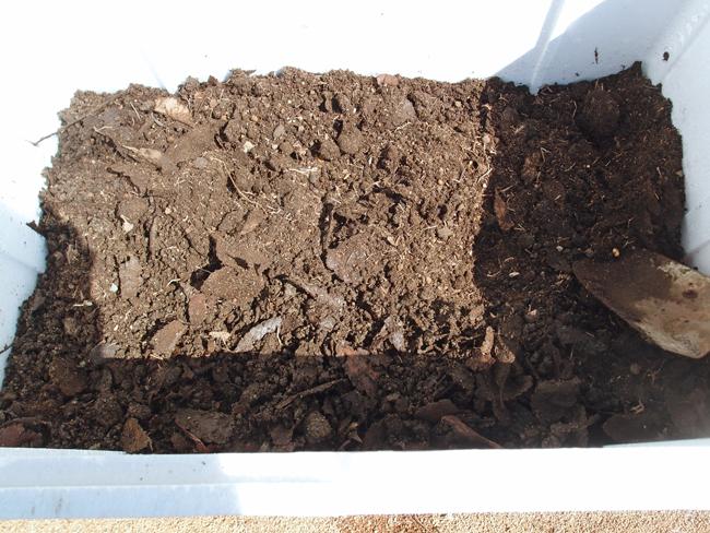 発泡スチロールに腐葉土を入れる