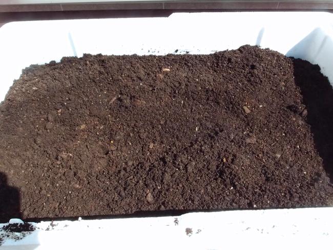 発泡スチロールを土で満たす