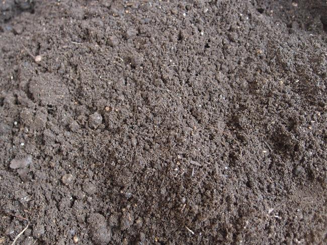 肥料を入れずに土を耕す