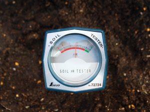 酸度を計測