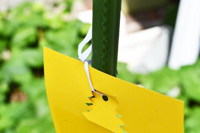 針金で固定する方法